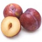 Organic - Plums - Teagan Blue -  Grower Direct  - Approx 1kg