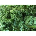 FROZEN - Organic - Frozen Chopped Kale in 15g portions - 600g
