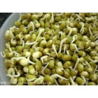 Groceries - Organic - Beans - Mung Beans - Sproutable - 3x250g