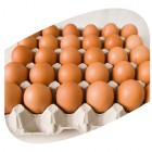 Eggs - Organic - Certified Organic WA Eggs  - Large Caters 30 tray 700g - TO ALL HUBS