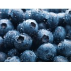 Conventional - Blueberries - 125g Punnet