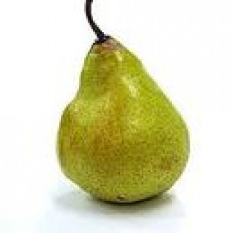 Grower Direct - Conventional - Pears - Packham - SECONDS - approx 1kg Bag - GROWER DIRECT FROM PICKERING BROOK