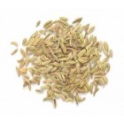 Groceries - Organic - Spices - Gourmet Organic Herbs - Fennel Seed 30g