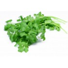 Organic - Coriander - Grower Direct - 100g