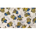 Groceries - Eco Friendly Re-usable Bags - Wet Bag 15 - Minions