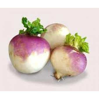 Conventional - Turnips - approx 1kg
