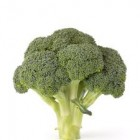 Conventional - Brocolli - Bunch - Each