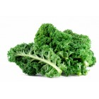 Organic - Kale - GREEN - Bunch - Grower Direct