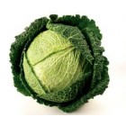 Conventional - Cabbage - Savoy – Each