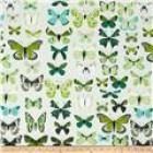 Groceries - Eco Friendly Re-usable Bag - Zip-it 15 - Green Butterflies