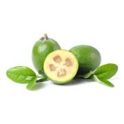 Conventional - Feijoas - Each