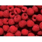Conventional - Raspberries - 125g Punnet